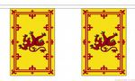 SCOTLAND LION BUNTING - 3 METRES 10 FLAGS
